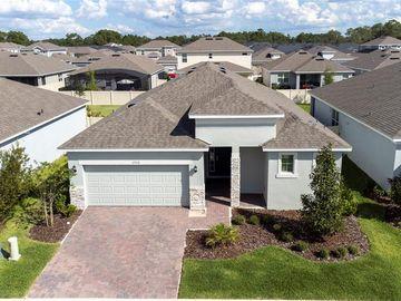2928 DEERBERRY LANE, Clermont, FL, 34714,