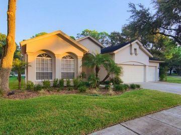 9610 NORCHESTER CIRCLE, Tampa, FL, 33647,