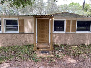 14215 BOLAND AVENUE, Spring Hill, FL, 34610,
