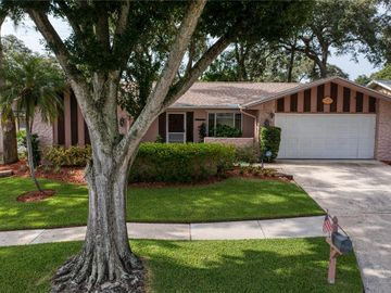 214 MEADOWCROSS DRIVE, Safety Harbor, FL, 34695,