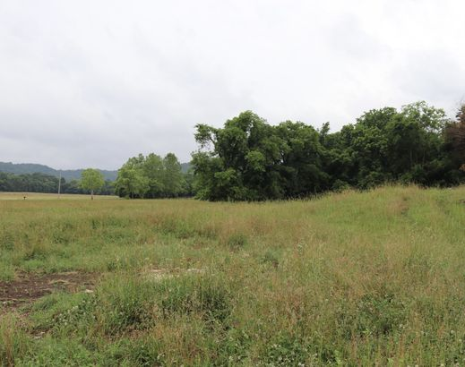 1649 Snake Creek Rd