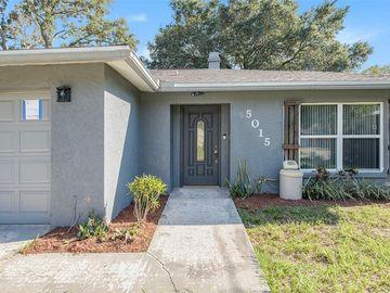 5015 E 111TH AVENUE, Tampa, FL, 33617,