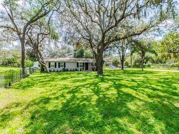 10901 N BOULEVARD, Tampa, FL, 33612,