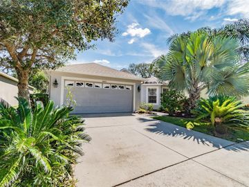 10631 LIBERTY BELL DRIVE, Tampa, FL, 33647,