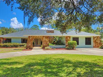 18523 30TH STREET, Lutz, FL, 33559,