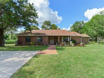 18101 MOORHAVEN DRIVE, Spring Hill, FL, 34610,