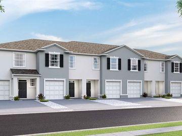 32578 TURTLE GRACE LOOP, Wesley Chapel, FL, 33545,