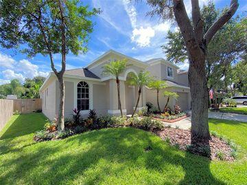 9044 PINEBREEZE DRIVE, Riverview, FL, 33578,