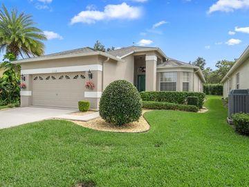 11328 HOLLANDER AVENUE, Hudson, FL, 34667,