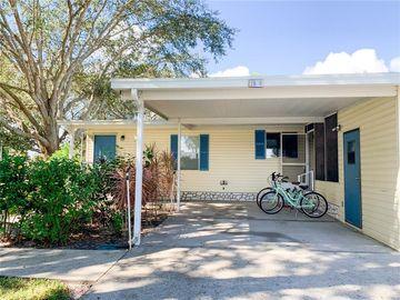 25035 CLIFFORD HILL, Leesburg, FL, 34748,