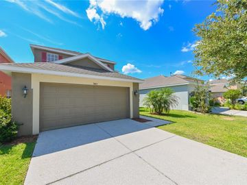 9413 LEATHERWOOD AVENUE, Tampa, FL, 33647,