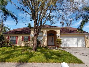 26927 CARLA PLACE, Lutz, FL, 33559,