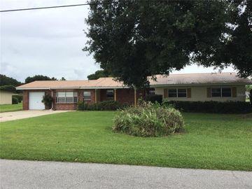 186 W LAKE DAMON DRIVE, Avon Park, FL, 33825,