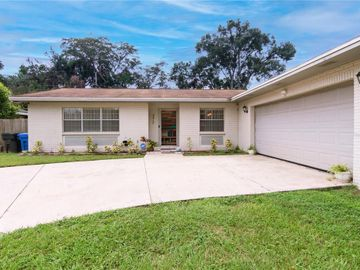 4413 SNAPPER STREET, Tampa, FL, 33617,