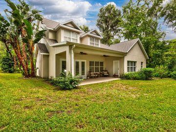 100 ISLAND DRIVE, Howey In The Hills, FL, 34737,