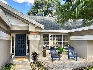 1523 SAND HOLLOW COURT, Palm Harbor, FL, 34683,