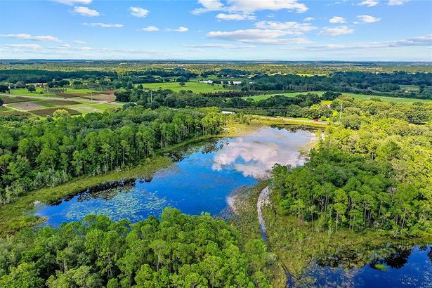 27+ ACRES STATE ROAD 33