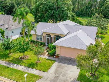 13504 PLANTATION LAKE CIRCLE, Hudson, FL, 34669,