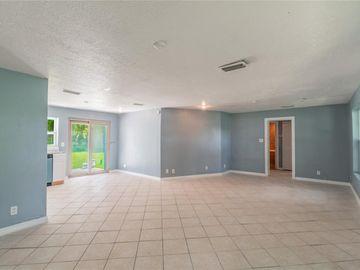 6901 WILLIAMS ROAD, Seffner, FL, 33584,