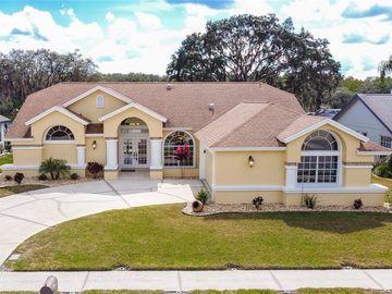 7342 EVESBOROUGH LANE, New Port Richey, FL, 34655,