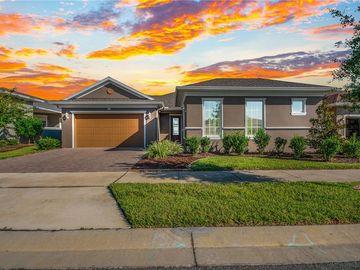 513 NARROW VIEW LANE, Groveland, FL, 34736,