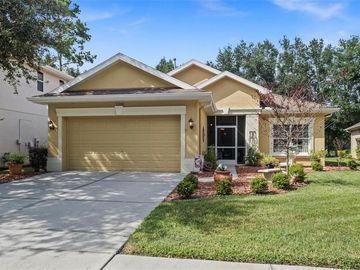 5248 ESPLANDE COURT, Brooksville, FL, 34604,