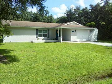 1878 NE DARREN STREET, Arcadia, FL, 34266,