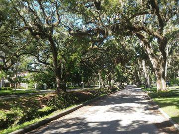 4617 W WOODMERE ROAD, Tampa, FL, 33609,