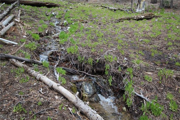 1 Deer Creek