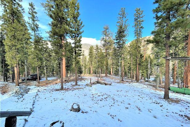 585 Snow Fall Trail