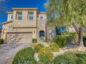 9724 Wildflower Vista Avenue, Las Vegas, NV, 89166,